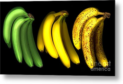 Bananas Metal Print by Tony Cordoza