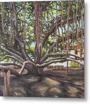 Banyan Tree Lahaina Maui Metal Print