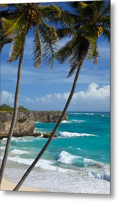 Barbados Metal Print by Brian Jannsen