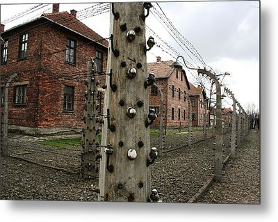 Metal Print featuring the photograph Barbed by Steve Godleski