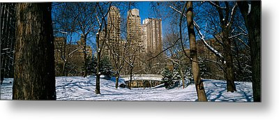 Bare Trees With Buildings Metal Print