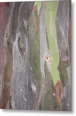 Bark Of Tree, San Juan Metal Print by Jean Marie Maggi