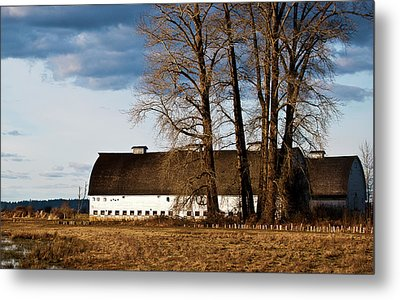 Metal Print featuring the photograph Barn And Trees by Ron Roberts