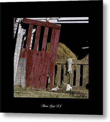 Barn Cats II Metal Print by Gina Munger