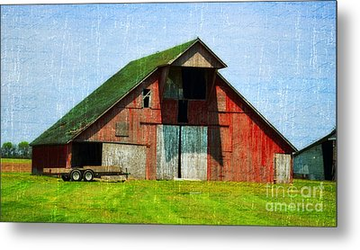 Barn - Central Illinois - Luther Fine Art Metal Print by Luther Fine Art