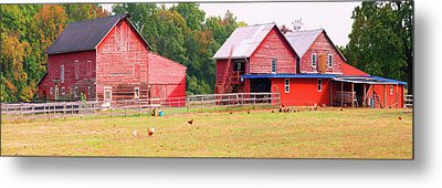 Barn In A Field, Route 34, Colts Neck Metal Print