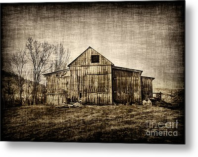 Barn On Farm Metal Print by Dan Friend