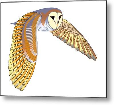 Barn Owl Metal Print by Fred Croydon