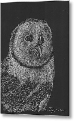 Barn Owl Metal Print by Lawrence Tripoli