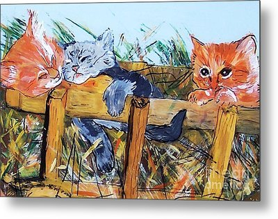 Barncats Metal Print by Lucia Grilletto