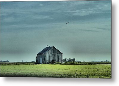 The Flight Home Metal Print by Dan Sproul