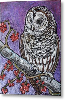 Barred Owl And Berries Metal Print by Ande Hall