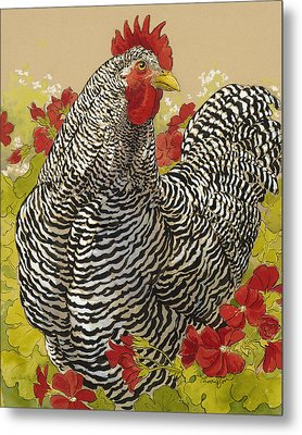 Barred Rock Rooster In The Geraniums Metal Print by Tracie Thompson