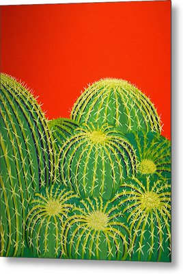 Barrel Cactus Metal Print by Karyn Robinson