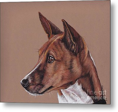 Basenji Metal Print by Charlotte Yealey