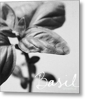 Basil Metal Print by Linda Woods