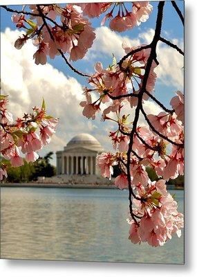 Basin Blossoms Metal Print