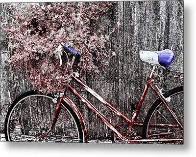 Basket Full Metal Print by Mark Kiver