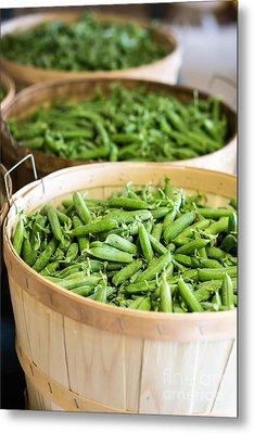 Baskets Of Fresh Picked Peas Metal Print