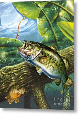 Bass And Pads Metal Print by Jon Q Wright