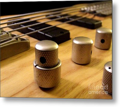 Metal Print featuring the photograph Bass by Andrea Anderegg