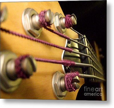 Metal Print featuring the photograph Bass II by Andrea Anderegg