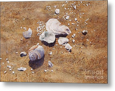 Metal Print featuring the painting Bass River Seashells by Karol Wyckoff