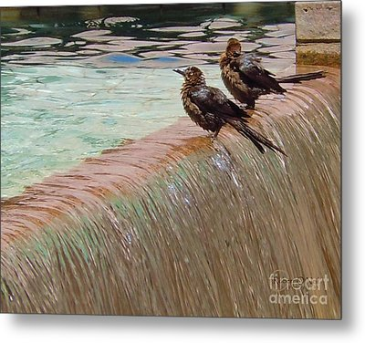 Metal Print featuring the photograph Bath Time At The Adolphus by Robert ONeil