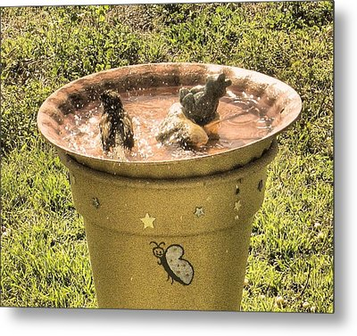 Bath Time Metal Print by Rosalie Klidies