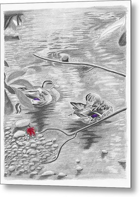 Bathing In The River Metal Print by Susan Schmitz