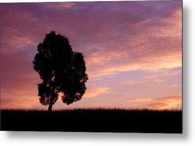 Battlefield Tree Metal Print