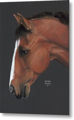 Bay Horse  Metal Print by Heather Gessell