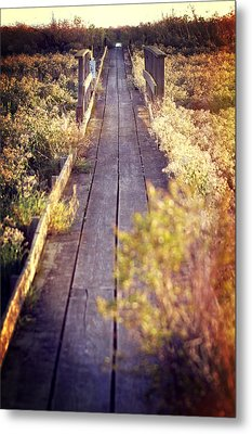 Bay Lands Walk Metal Print