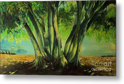 Bay Leaves Tree Metal Print by Alessandra Andrisani