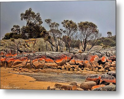 Metal Print featuring the photograph Bay Of Fires 2 by Wallaroo Images