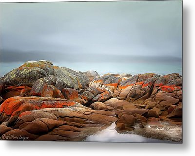 Bay Of Fires 4 Metal Print by Wallaroo Images