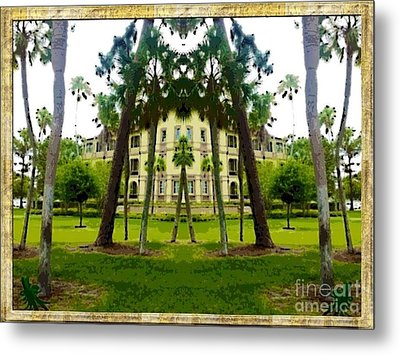 Bay Pines Metal Print by Caroline Gilmore