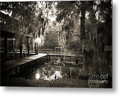 Bayou Evening Metal Print by Scott Pellegrin