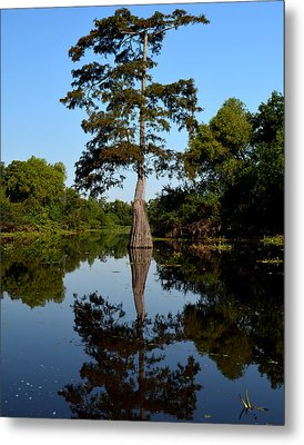 Bayou Reflections Metal Print by Maggy Marsh