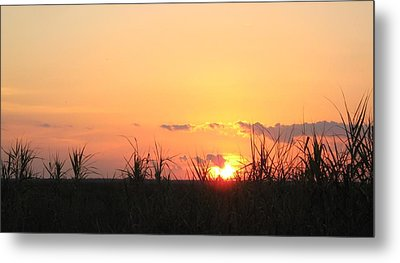 Metal Print featuring the photograph Bayou Sunset by John Glass