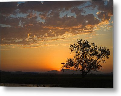 Metal Print featuring the photograph Bayview Sunset by Sonya Lang