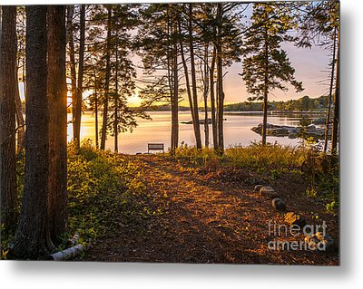 Bayview Sunset Metal Print by Susan Cole Kelly