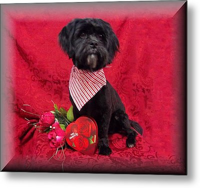 Be My Valentine Metal Print by Rosalie Klidies