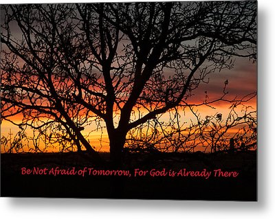 Be Not Afraid Metal Print by Shirley Heier