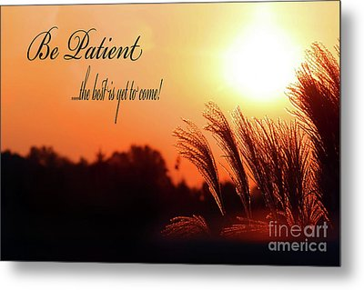 Be Patient Metal Print by Cathy  Beharriell