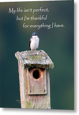 Be Thankful Metal Print by Bill Wakeley