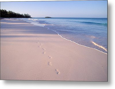Beach Metal Print by Anonymous