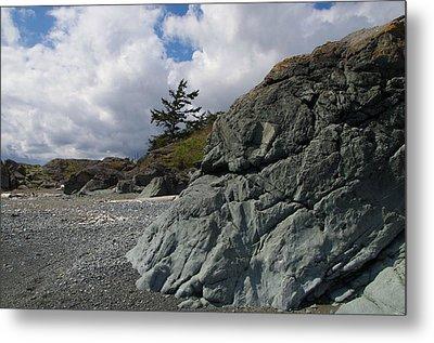 Beach At Fort Rodd Hill Metal Print by Marilyn Wilson