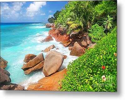 Beach Beauty Metal Print by Boon Mee