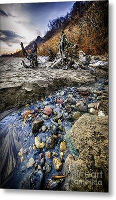 Beach Brook At Scarborough Bluffs Metal Print by Elena Elisseeva